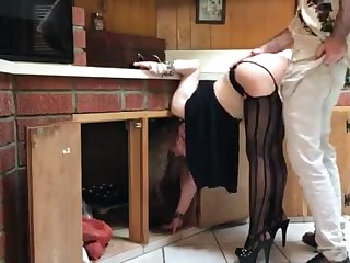 COUGAR stuck in the Nautical galley drilled overwrought neighbor (pin)